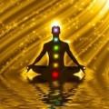 Mahatma Avatar Training