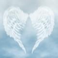 Angel light Facilitator training